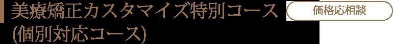 美療矯正カスタマイズ特別コース(個別対応コース)